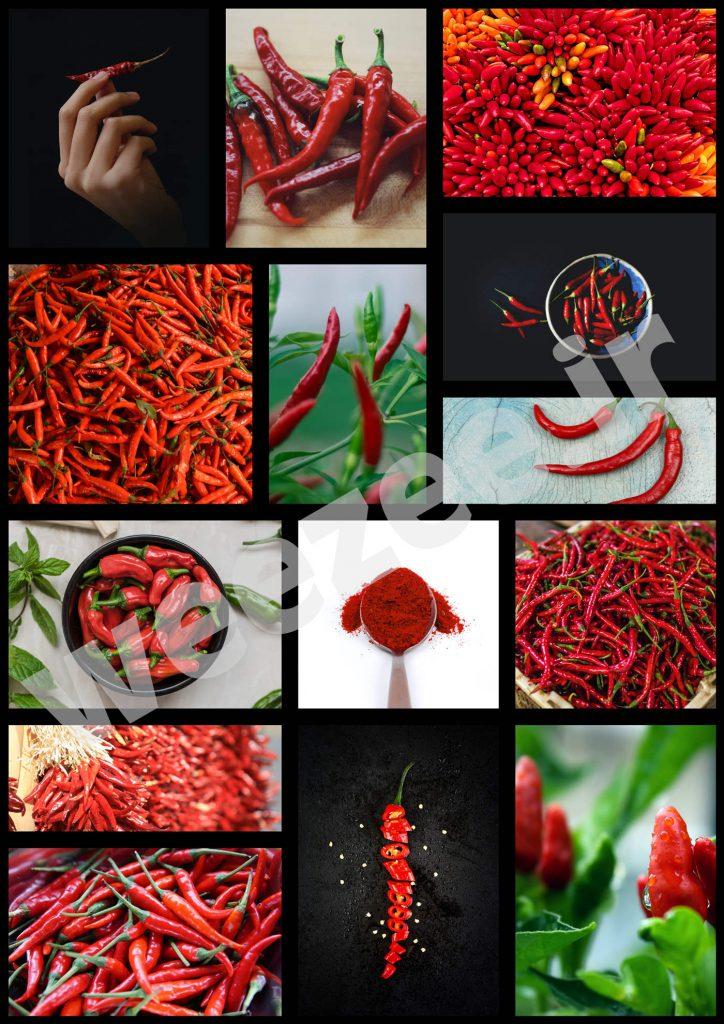 دانلود تصاویر باکیفیت فلفل قرمز